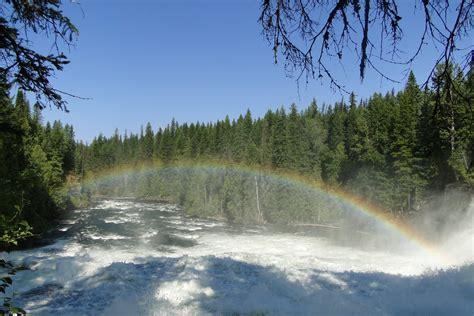 canada turisti per caso canada gray provincial park viaggi vacanze e