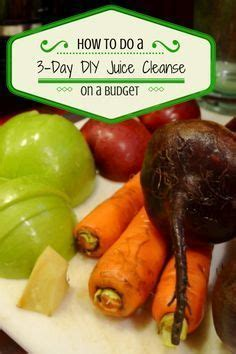 Detox Cleanse On A Budget by 25 Best Ideas About Blueprint Cleanse On