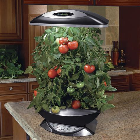 Small Kitchen Idea by Aerogarden Pro 200 The Green Head