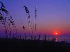 S Carolina Beaches Myrtle South Carolina The Coo