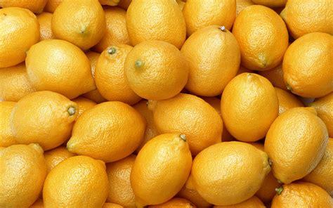fruit pattern hd lemon lemons fruit color patterns pattern food wallpaper