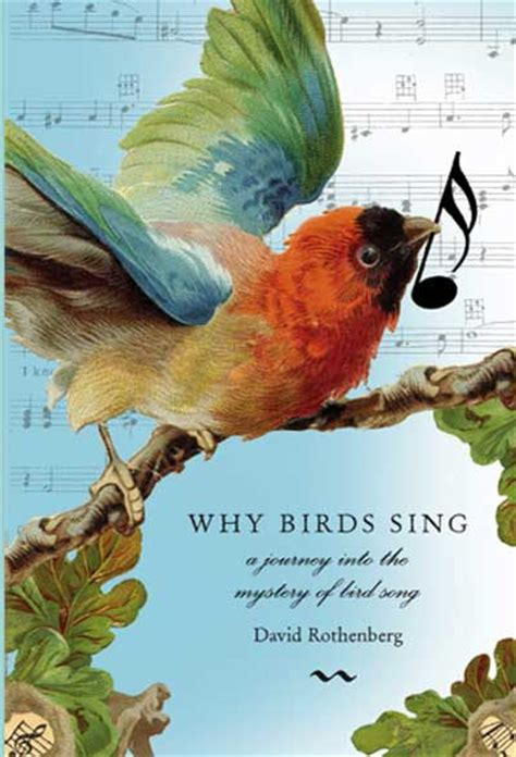 why birds sing music of sound