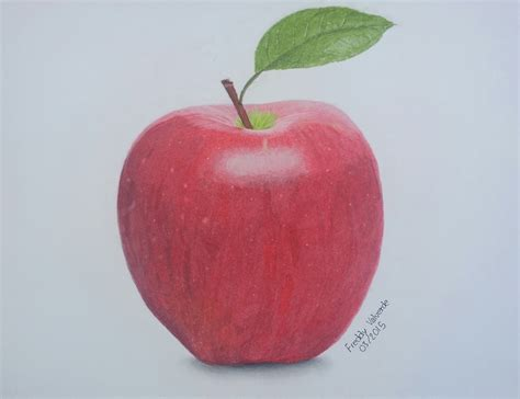 drawing an apple with colored pencils time lapse