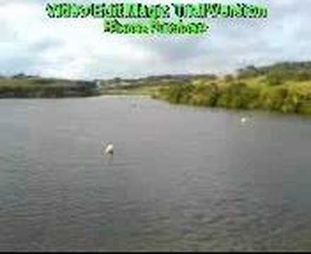 airboat uk rc airboat plymouth uk youtube