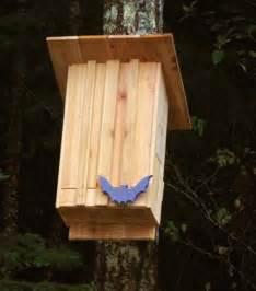 backyard bat house bat house ideas worth hanging around for rid your