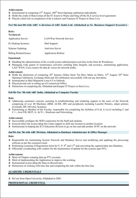 3 Page Resume Format