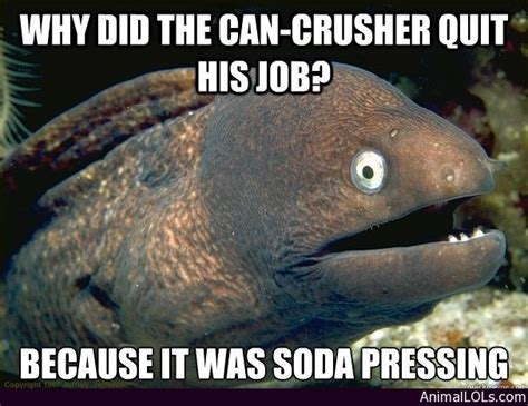 bad joke some of the most hilariously bad jokes you will read why the can crusher quit