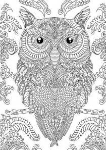 owl coloring pages for adults 10 difficult owl coloring page for adults