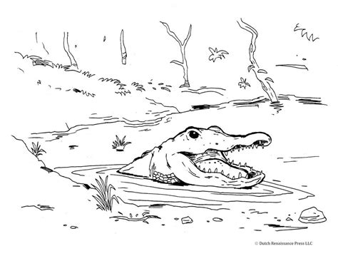 Alligator Coloring Sheets by Crocodile In The Water Coloring Page