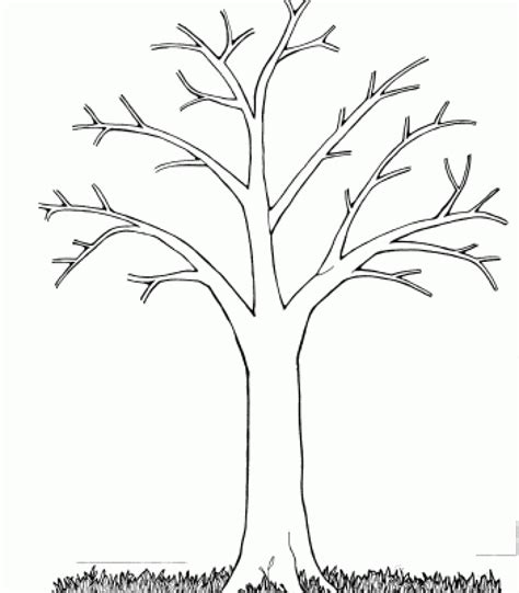 Big Tree Coloring Page Coloring Pages Of Trees Without Leaves Snap Cara Org by Big Tree Coloring Page