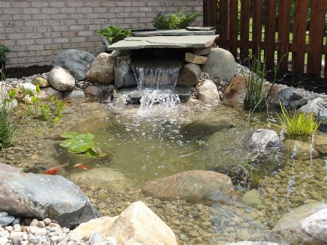 Backyard Fish Pond Maintenance Ponds Greenwood In Landscape Design Amp Installation