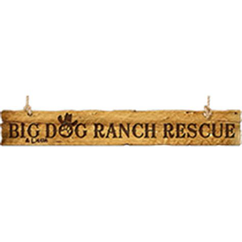 big ranch rescue covering luxury and estate homes on the west coast of florida