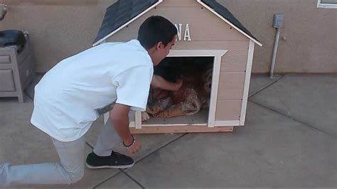 How To Build A Large Dog House Youtube