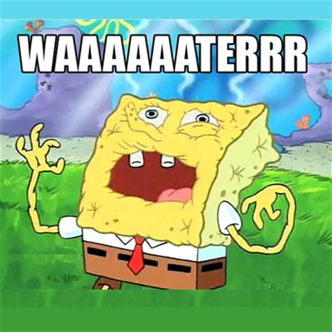 Spongebob Water Meme - the spongebob squarepants movie sponge out of water
