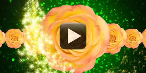 Wedding Background Effects Hd For Titles by Wedding Title Background Effects Hd All Design