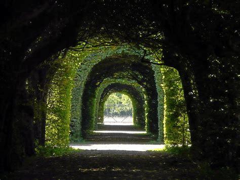 licht design bamberg licht und schatten bamberg kultur panoramio photo of