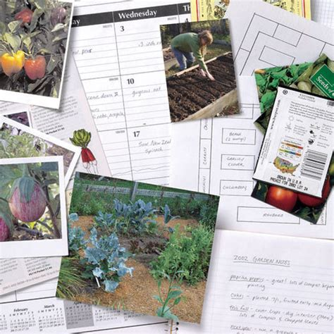 Planning A Vegetable Garden From Scratch How To Plan A Vegetable Garden Finegardening