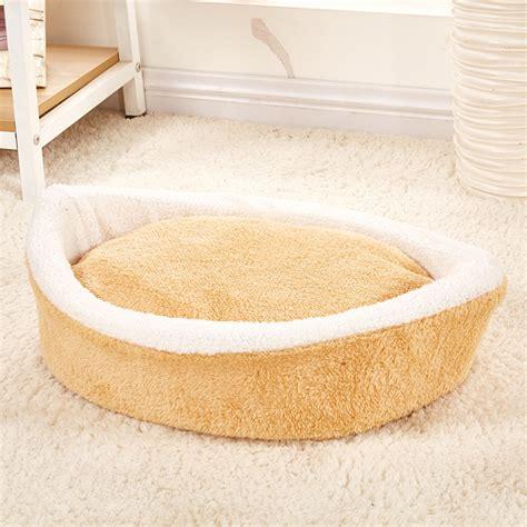 cani a letto animali domestici gatto letto cucciolo cuscino casa