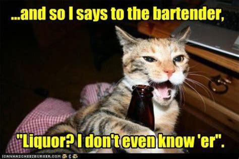Funny Bartender Memes - 16 golden tips for hitting on a bartender love games or