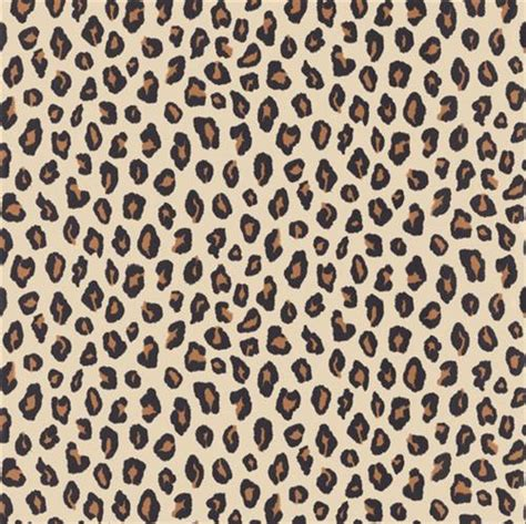 cheetah wallpaper for bedroom cheetah print bedroom wallpaper interior exterior doors