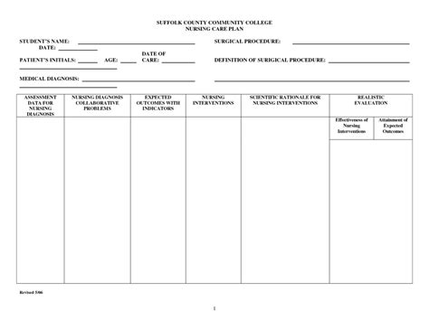 free nursing care plan templates 1 best agenda templates