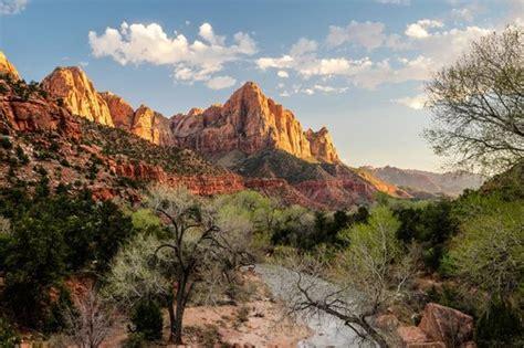 parus trail zion national park