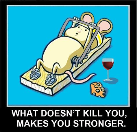 what makes a magnet mouse working out in mousetrap what doesn t kill you makes you stronger magnet ebay