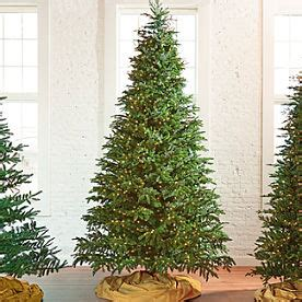 grandinroad noblis fir tree for sale artificial trees pre lit trees grandin road