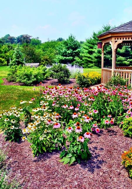 Get The Scoop On Cubic Yards Mulch Pricing In Maryland Landscaping Prices