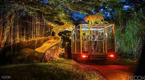 bali safari and marine park bali activity bali safari and marine park klook