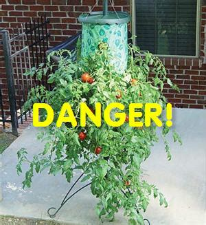 topsy turvy tomato planter another tomato attack quot topsy turvy quot tomato stand recalled after 155 injuries consumerist