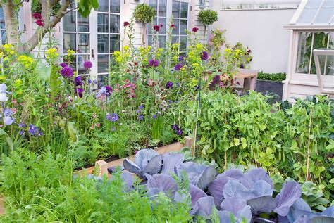 perennial garden vegetables 10 most profitable farming business ideas in 2017
