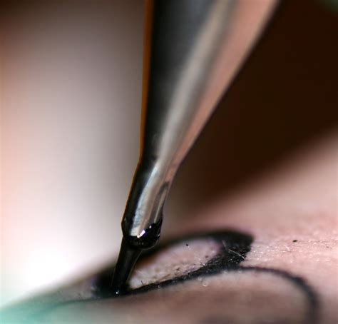 tattoo needle divinity 2 bestand tattoo needle jpg wikipedia