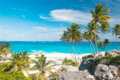 best barbados the best of culture in barbados