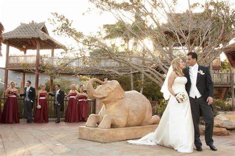 Wedding Ceremony Taronga Zoo by Wedding With A View At Taronga Zoo Modernweddingblog