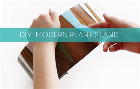 repurpose  common household item   modern plant