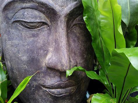 imagenes zen free photo zen buddha relax tranquility free image
