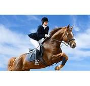 Jockey And Jumping Horse