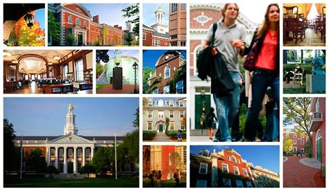 Best Mba In The World 2013 by Top 10 Best Mba Colleges In The World Shofia Hidayah
