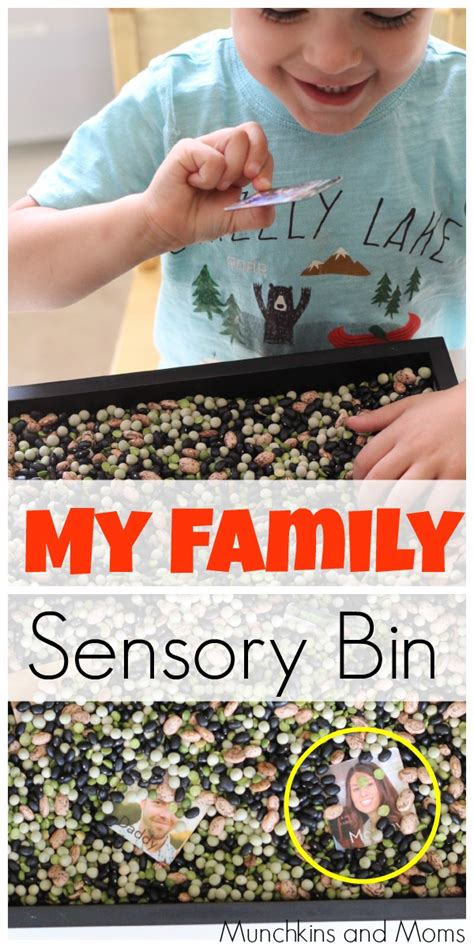 my family motors quot my family quot sensory bin munchkins and