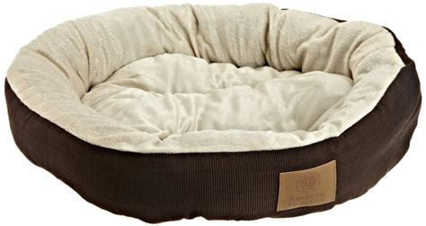 bedside dog bed the benefits of dog beds for you and your dog inspirationseek com