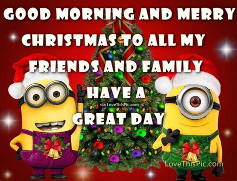 good morning  merry christmas minion quote pictures   images  facebook tumblr