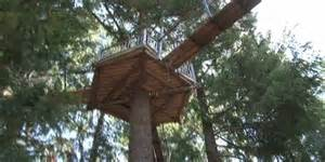 Octogon House is this the highest concentration of treehouses in the