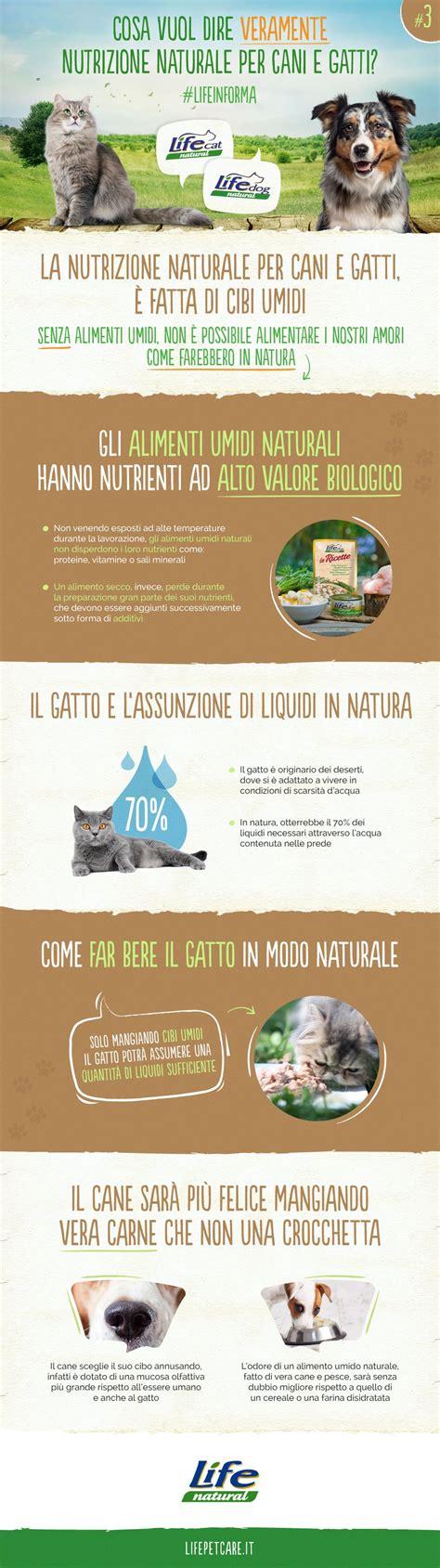 alimenti naturali per gatti 3 la nutrizione naturale per cani e gatti 200 fatta di