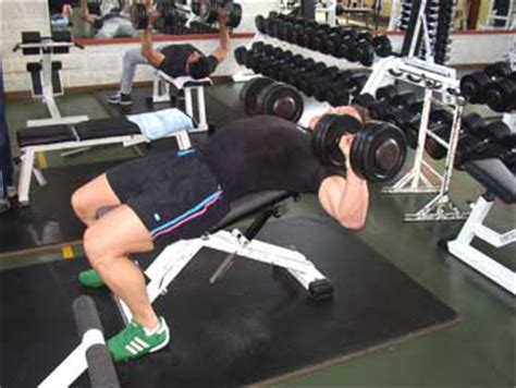 incline bench press tips 28 images types of bench