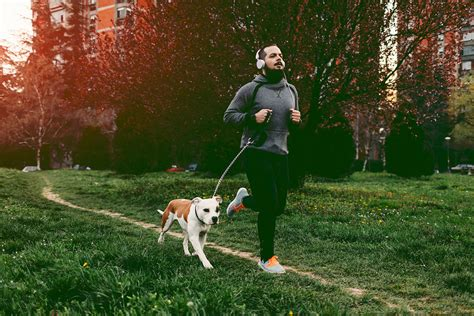 running with dogs the best ways to exercise with your aaptiv