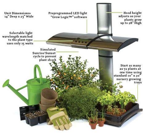 hydroponics herb garden kitchen
