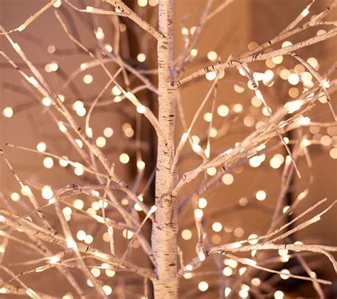indooroutdoor birch tree  twinklesteady lights