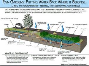 Rain garden design plan garden design garden design with designs for