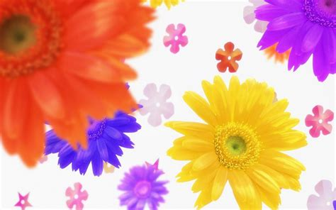 colorful wallpapers hd free download hd wallpapers colorful flowers desktop backgrounds full